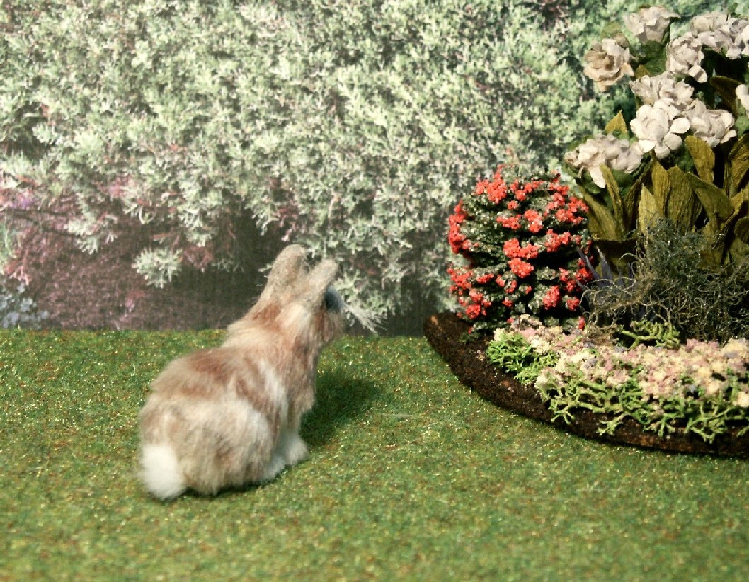dolls house rabbit
