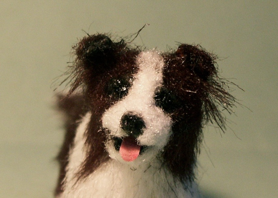 Border collie for the dolls house