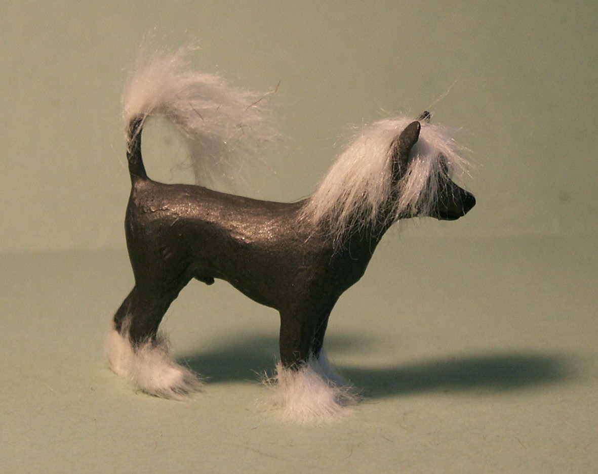 Chinese Crested dog for the dolls house